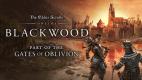 The Elder Scrolls Online: Blackwood Collector's Edition Upgrade